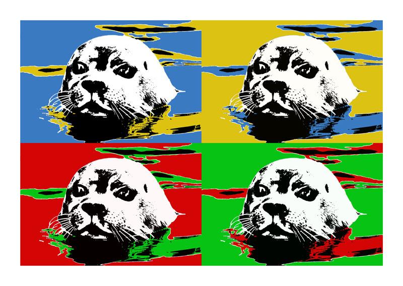 Seehunde 4er