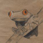 Frosch-2-klein