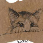 Katze-klein