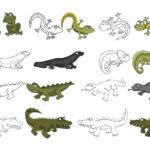 Amphibien Echsen Reptilien