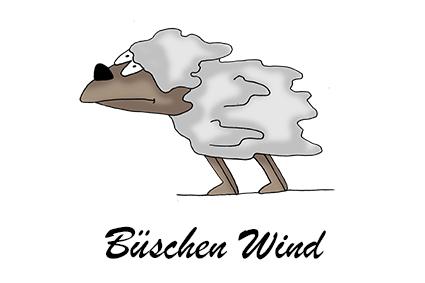 Büschen Wind Elli