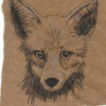 Fuchs-klein