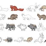 Heimische Tiere