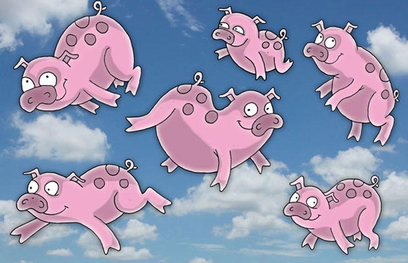 fliegende-Schweine-2